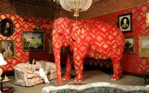 Maduro elefante