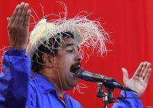 maduro-bird-hat