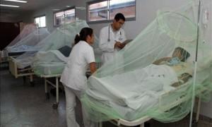 dengue-y-malaria-960-630x378