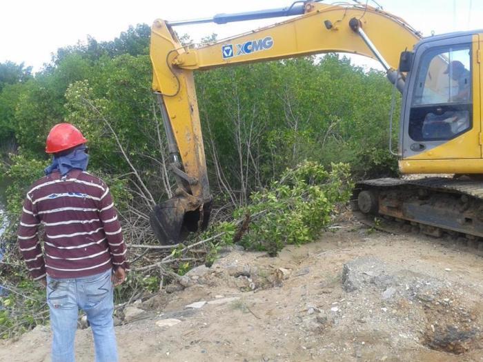 La Restinga Deforestación