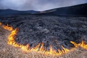 Burning_the_Konza-1